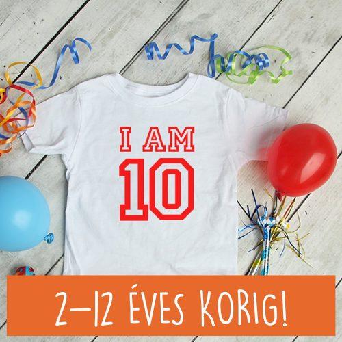 Gyerek születésnapi póló számmal