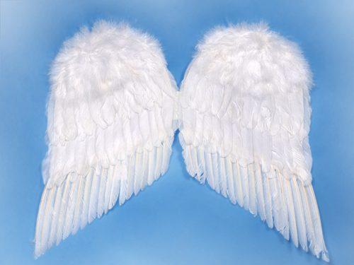 Angyalszárnyak, fehér, 55x45 cm
